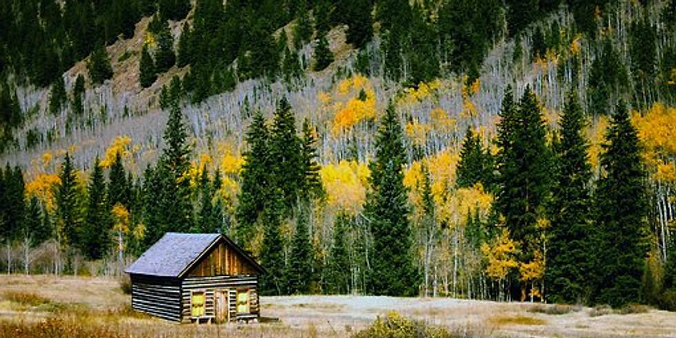 FREE Online Presentation: Colorado Aspen Color