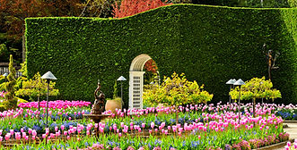 Brentwood Bay (Butchart Gardens).jpg