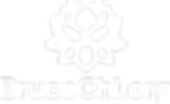 brucechi-logo-01.png