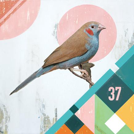 Blue Bird (2013)