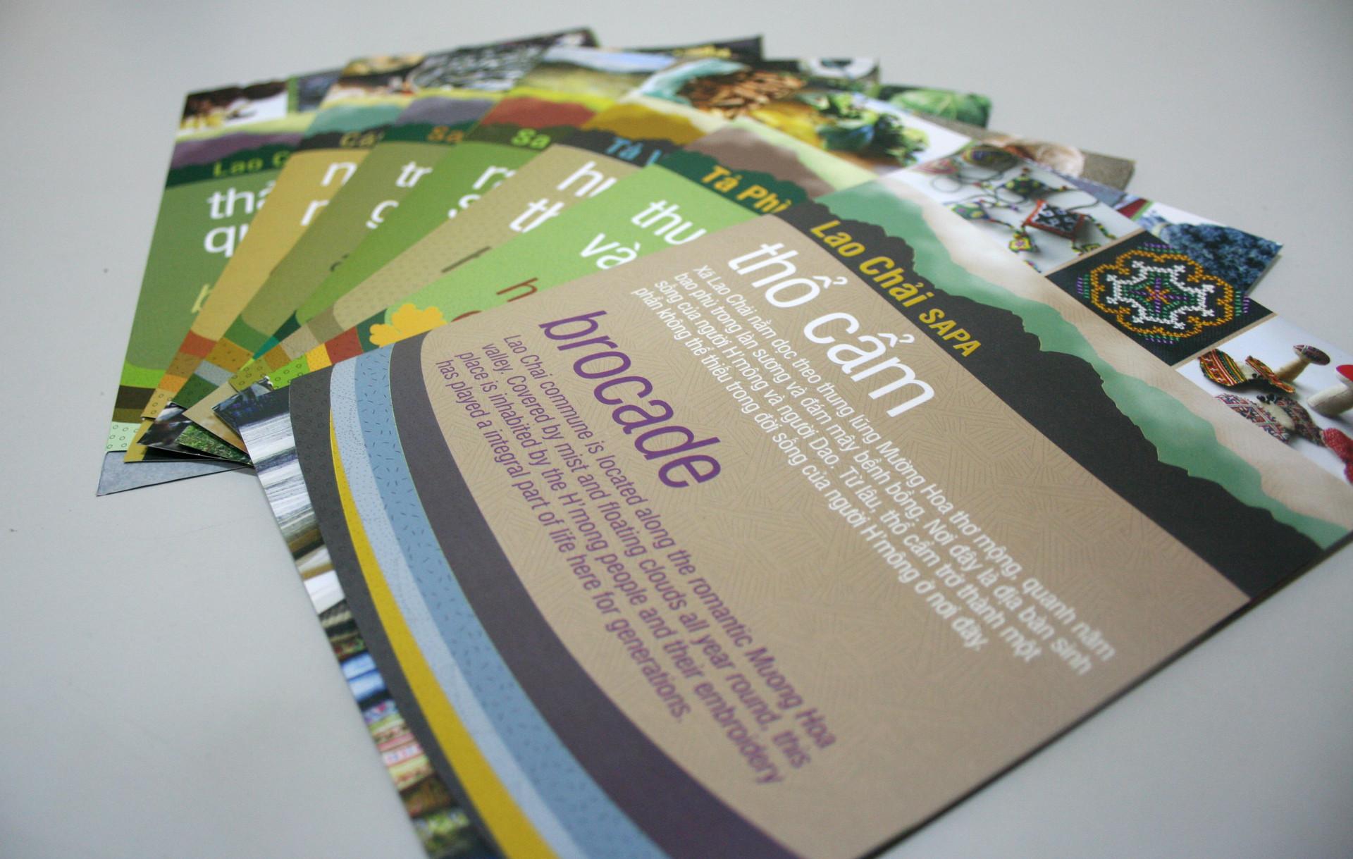 leaflets-collection.jpg