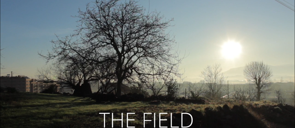 The Field, an ongoing project