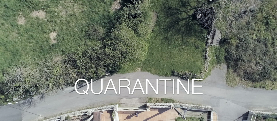QUARANTINE DAY 31