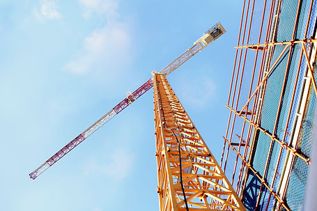 crane-5516863.jpg