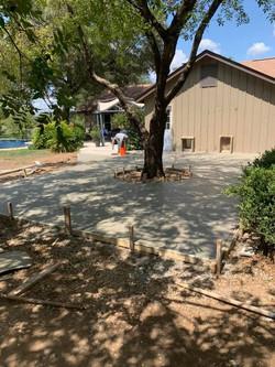Patio around existing tree