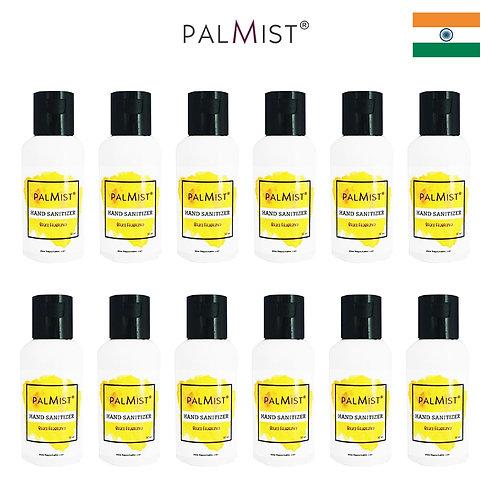 PALMIST - 免洗80%酒精搓手液50ml Brace香味 12枝裝