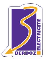 Bronze_-_Berdoz_Electricité.png