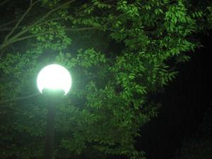 安全灯を区内5ヶ所に設置
