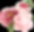 Bridal_Beauty_beyond[9632] PNG BIG_edite