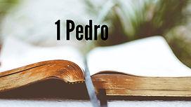1 Pedro Panorama general