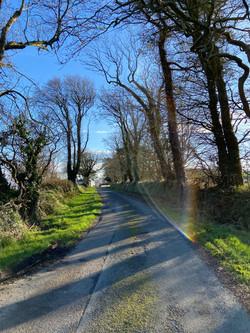Private lane to Moneylands Farm
