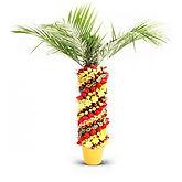 фруктовая пальма в Перми заказать, фрукты на праздник в Перми