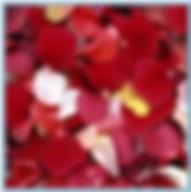 лепестки роз к пирамиде шампанского заказать в Перми