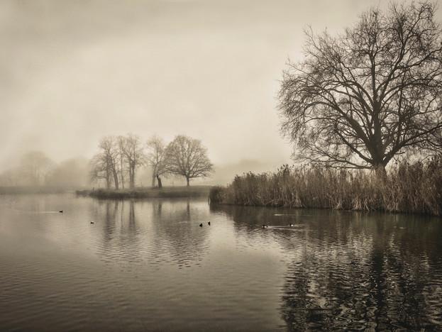 image © Oscar Lavanchytt