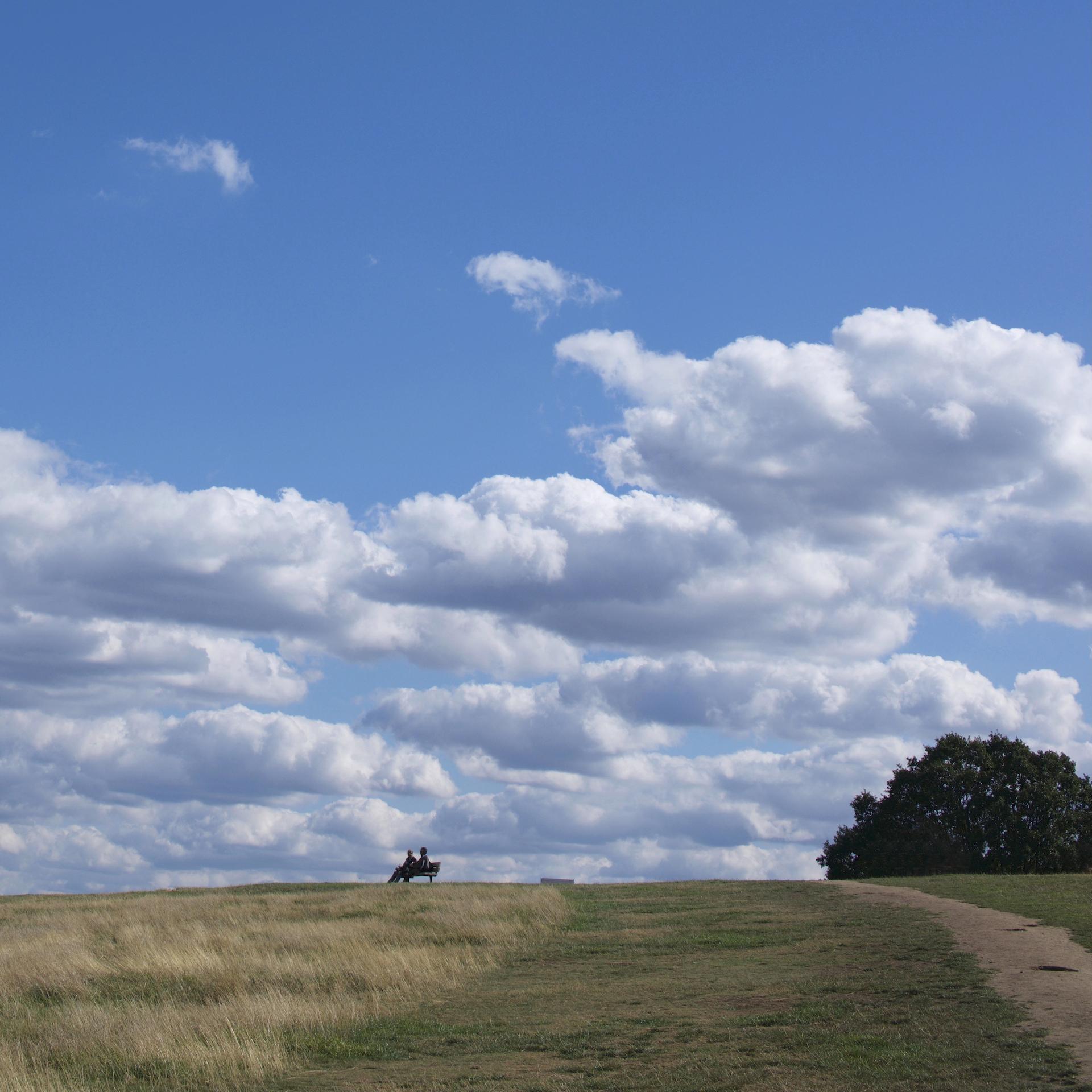 The Heath, Parliament Hill
