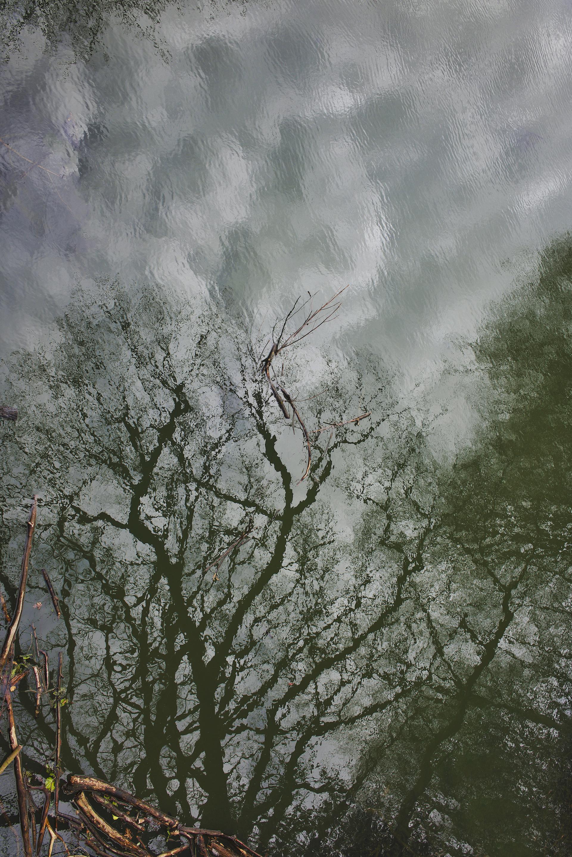 The Heath, Reflections