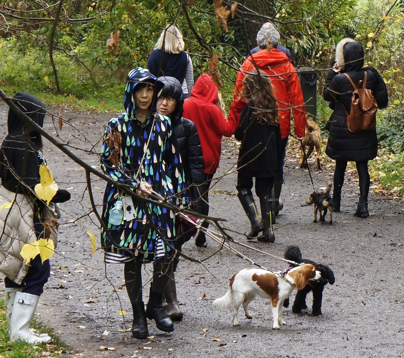Dogwalkers, Hampstead Heath.2020