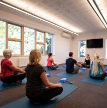 Yoga Pic DMC.jpg