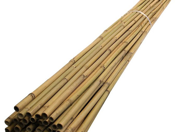 Bamboo Canes 1.8m Long (Bundles of various quantities)