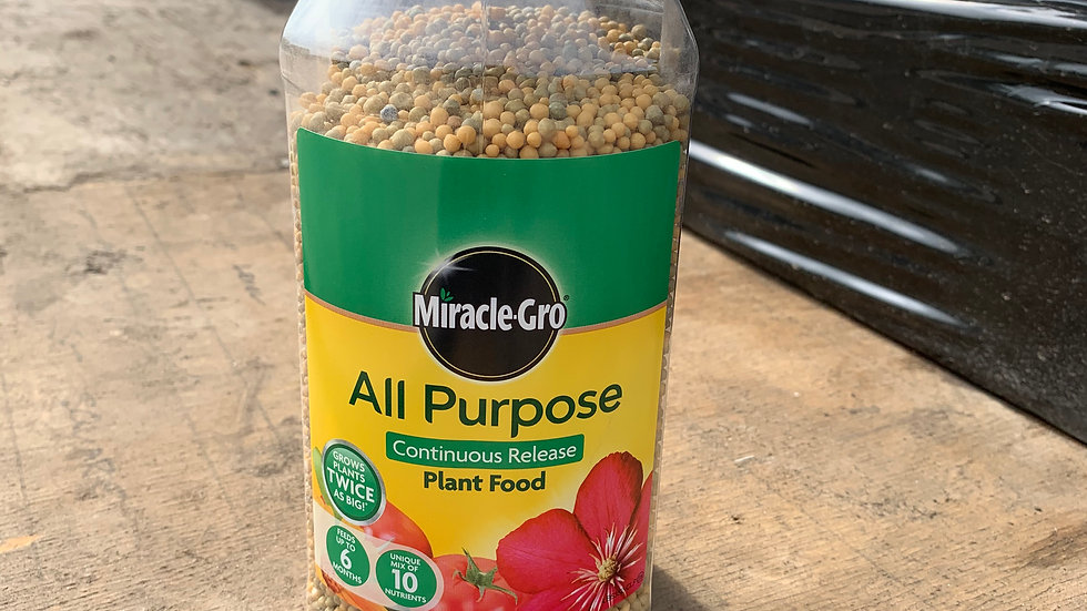 All Purpose Feed from Miracle Grow