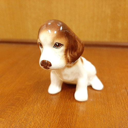 SylvaC Spaniel Pup Sitting 115 Brown & White