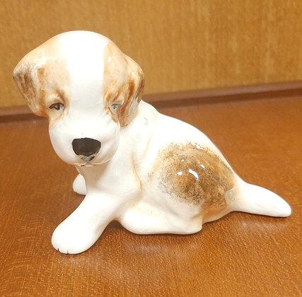 SylvaC Puppy Sitting 3114 White Tan Gloss