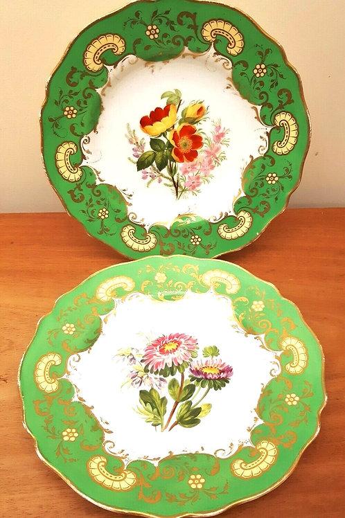 19thC Copeland Botanical Cabinet Plates 9314 c1852