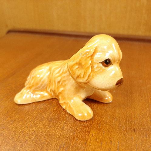 SylvaC Spaniel Pup Laying 116 Golden Fawn
