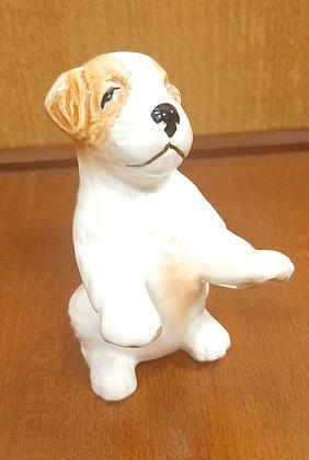 SylvaC Puppy Begging 3118 White Tan Gloss