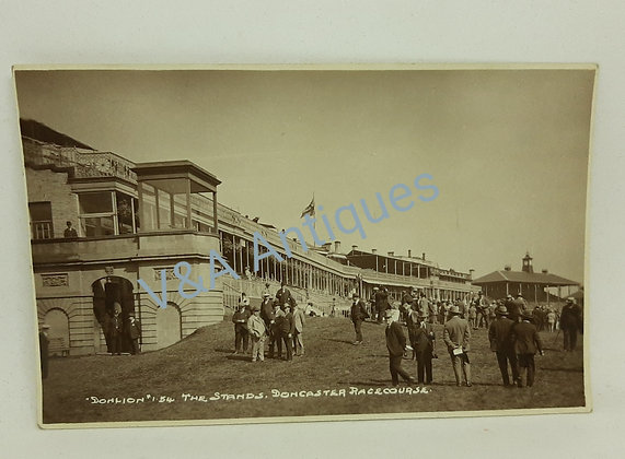 Don Lion RP The Stands Doncaster Racecourse 1920s