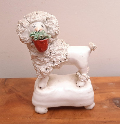 Early Staffordshire Miniature Poodle with Plant pot Enoch Wood?