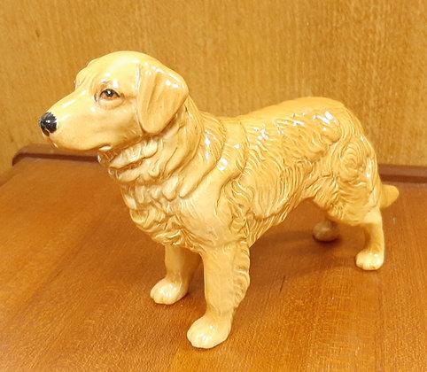 SylvaC Golden Retriever 3169