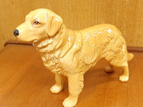 SylvaC Golden Retriever 3169