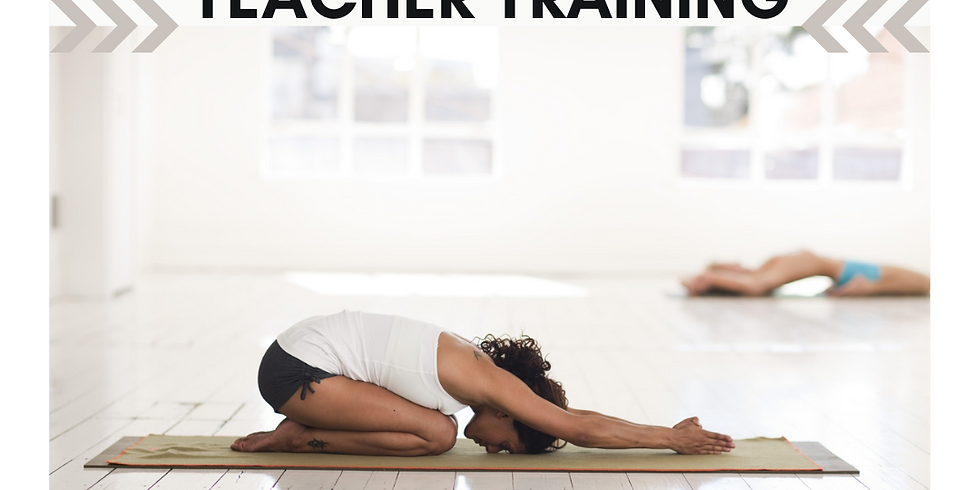 15 Hour Yin Yoga Teacher Training (YA CEC Eligible)