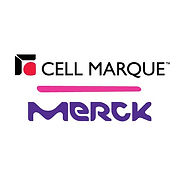 Cell Marque Merck.jpg