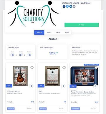 Online CSI Fundraiser sample.JPG
