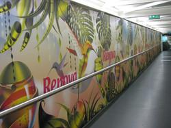 Full wall graphic Installation