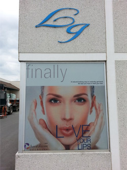 Window Graphic printing and install