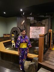 Shogun Gallery 40