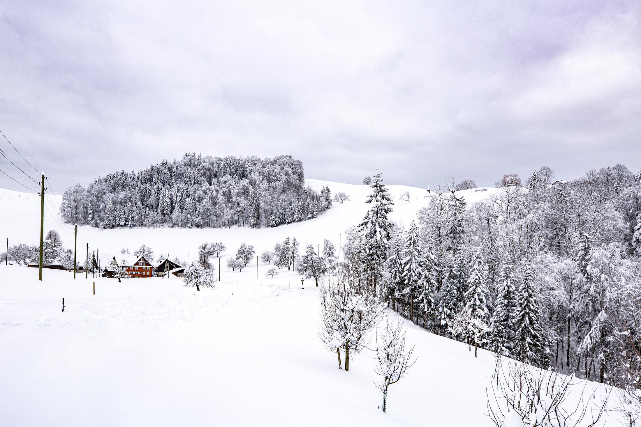 Winter Menzingen