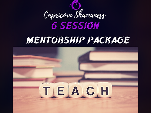 6 Session Mentorship Package
