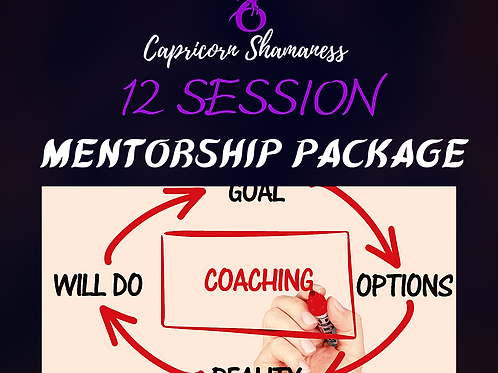 12 Session Mentorship Package