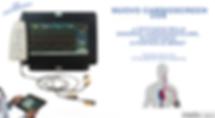 new cartdioscteem web2.png
