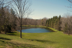 8374 Bleistein Rd Colden NY-large-029-34-View-1500x1000-72dpi