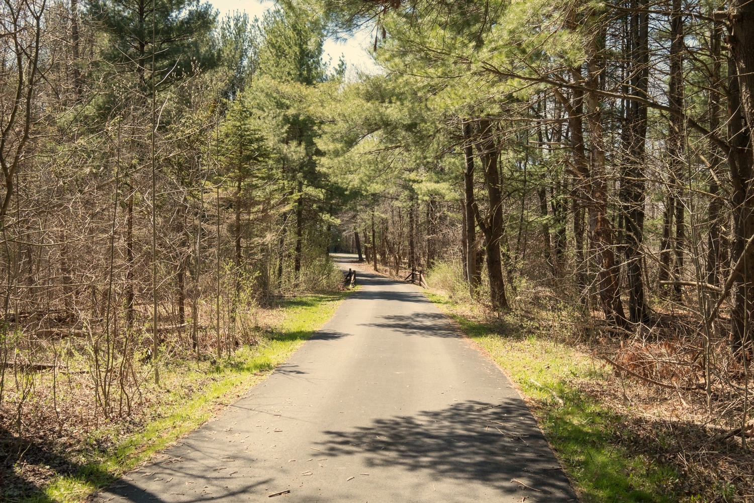 8374 Bleistein Rd Colden NY-large-037-37-Driveway-1500x1000-72dpi