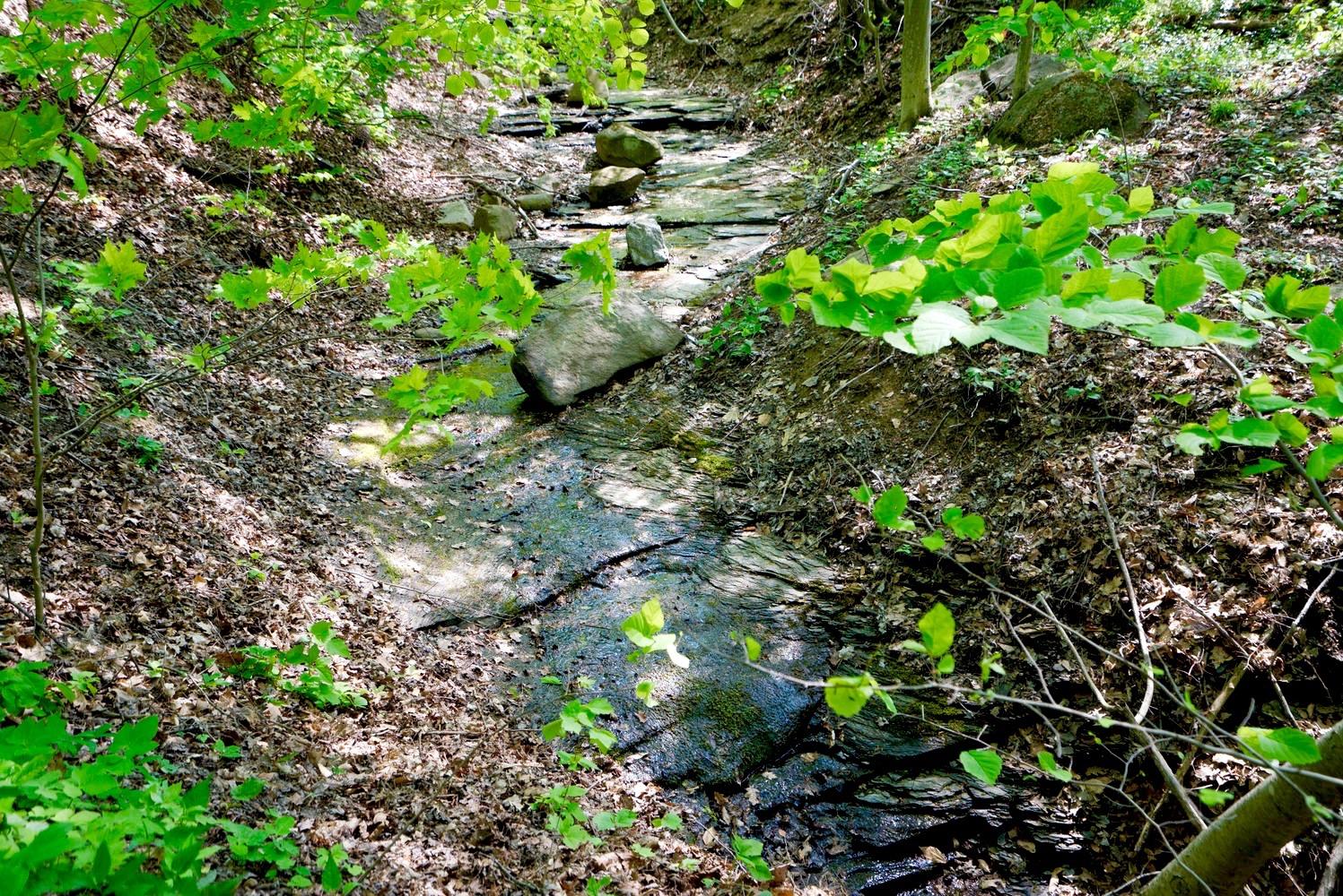 1000 Quaker Rd Orchard Park NY-large-027-22-Creek-1498x1000-72dpi