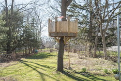 185 S Grove St East Aurora NY-large-024-22-Tree House-1498x1000-72dpi