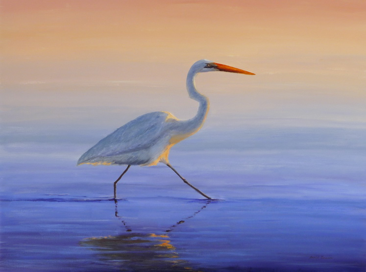 Egret - Elegant at Evening