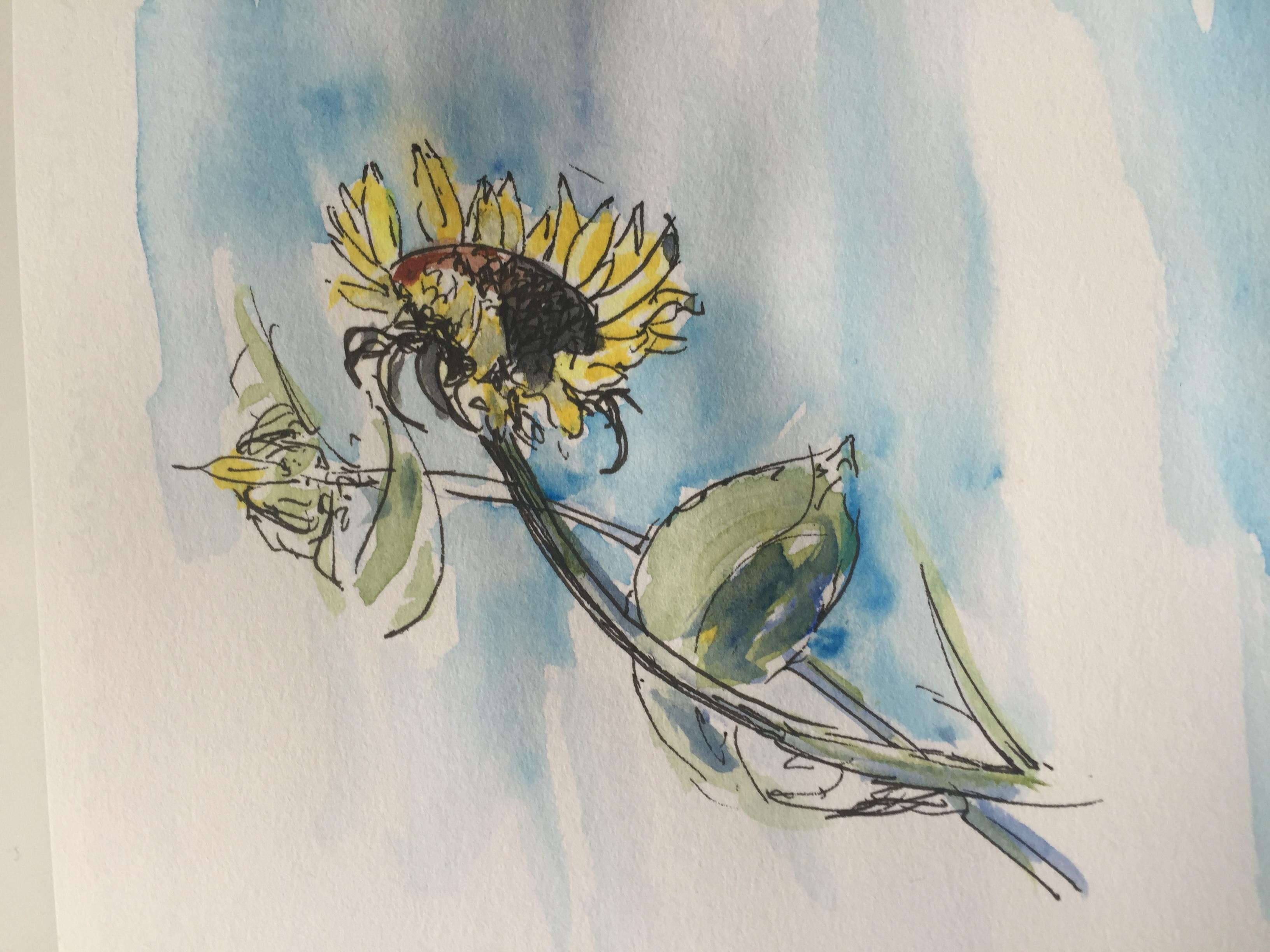 Sunflower Monet's Garden