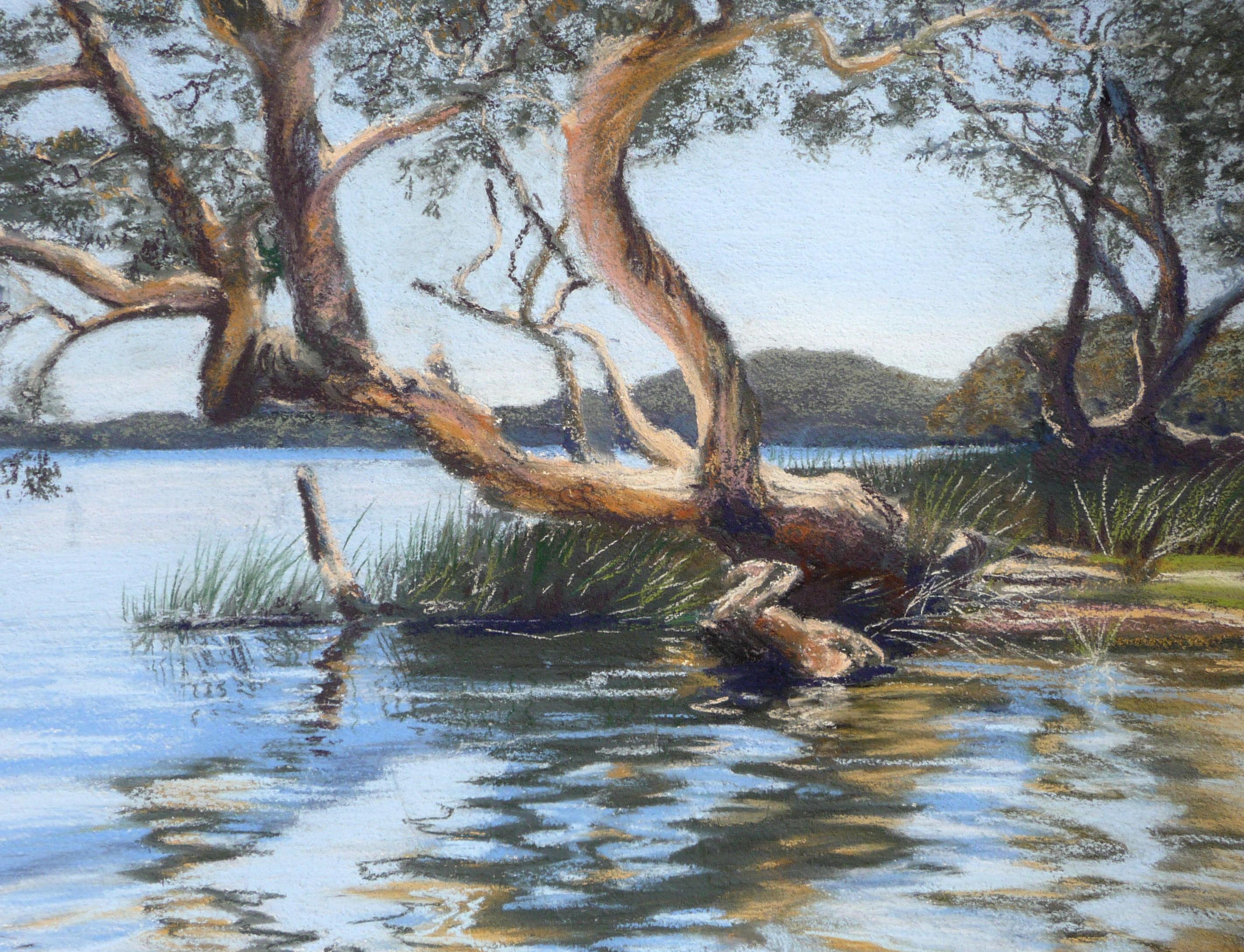 Johnson's Beach Myall Lakes